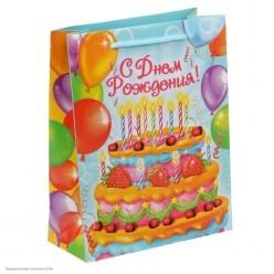"Пакет MS 18*23*8см ламинат ""С Днём Рождения!"" Торт"