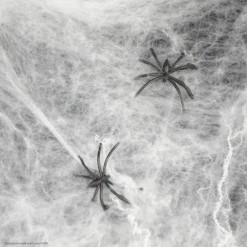 Паутина (синтепон) с 2-мя паучками (белая) 20гр