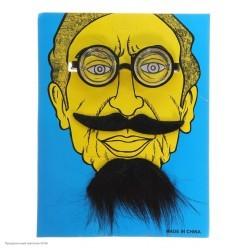 """Набор """"Учёный"""": усы, борода, очки"""