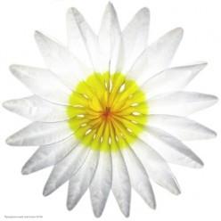 """Фант бумажный """"Цветок"""" 50см белый"""