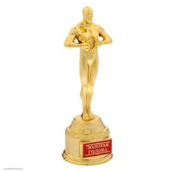 "Награда Оскар ""Золотая голова"" 18,5*6,6*6см"